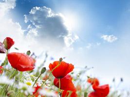 Aufbauende Spruche Zur Motivation Und Aufheiterung Aufbauender Spruch