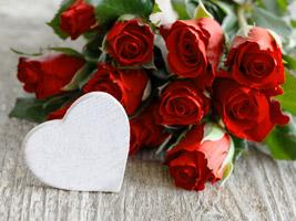 Romantische Spruche Zum Hochzeitstag Mit Einem Spruch Zum